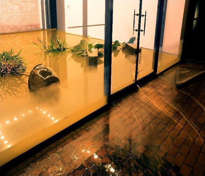 Water Damage Crawl Cleanup in Laguna Beach, CA (7728)