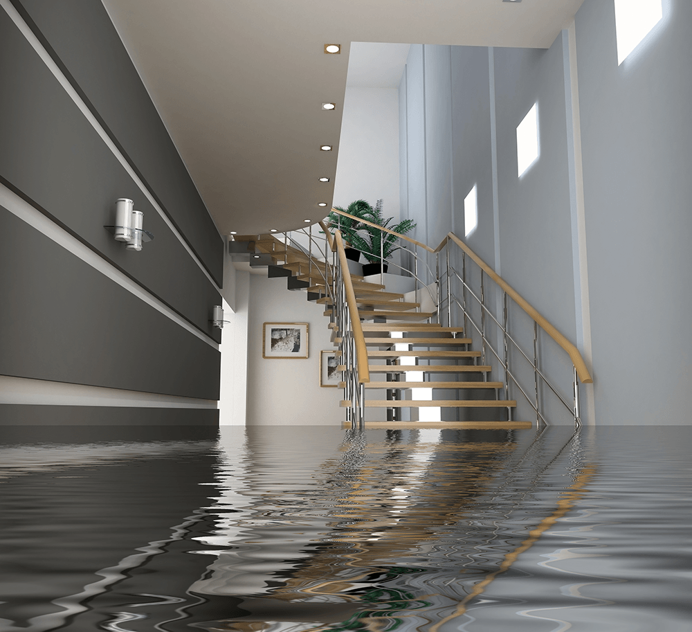 Water Damage Crawl Cleanup in Whittier, CA (2900)